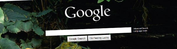 Is Google Going Bing?
